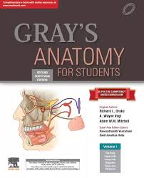 Gray's Anatomy For Students-Second South Asia Edition 2019